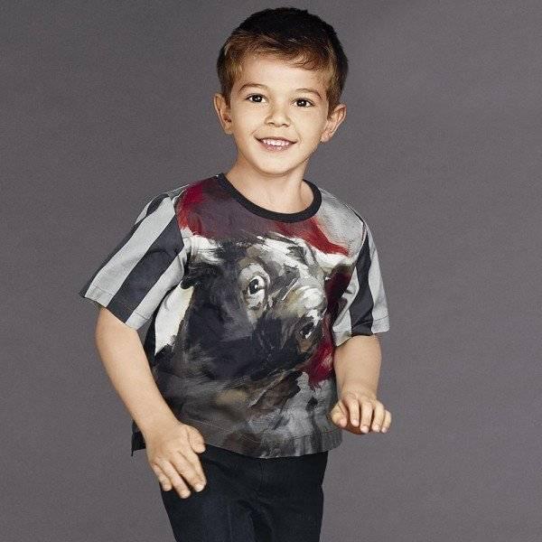 Dolce & Gabbana Boys Grey Striped Bull Cotton Top