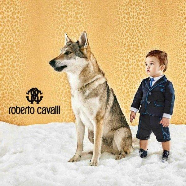 Roberto Cavalli Baby Boys Blue Suit
