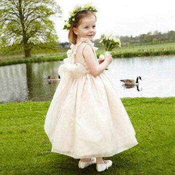NICKI MACFARLANE Pink Silk Organza 'Mirabelle' Long Length Dress