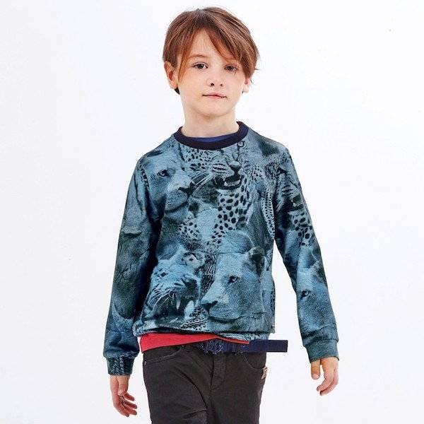 ROBERTO CAVALLI Boys Blue Jaguar Print Sweatshirt