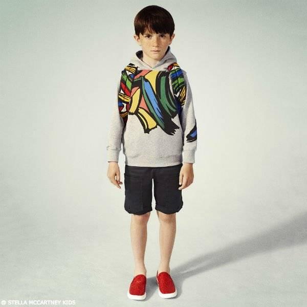 STELLA MCCARTNEY KIDS Boys Grey Heath Sweatshirt