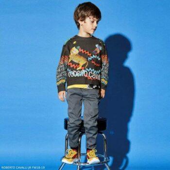 ROBERTO CAVALLI Boys Grey Fantasy Creature Print Sweatshirt