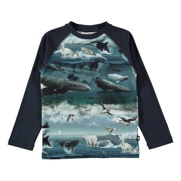Molo Remington Arctic Landscape T-Shirt