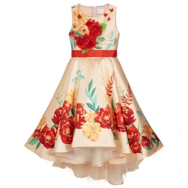 Eirene Gold & Red Floral Satin Dress