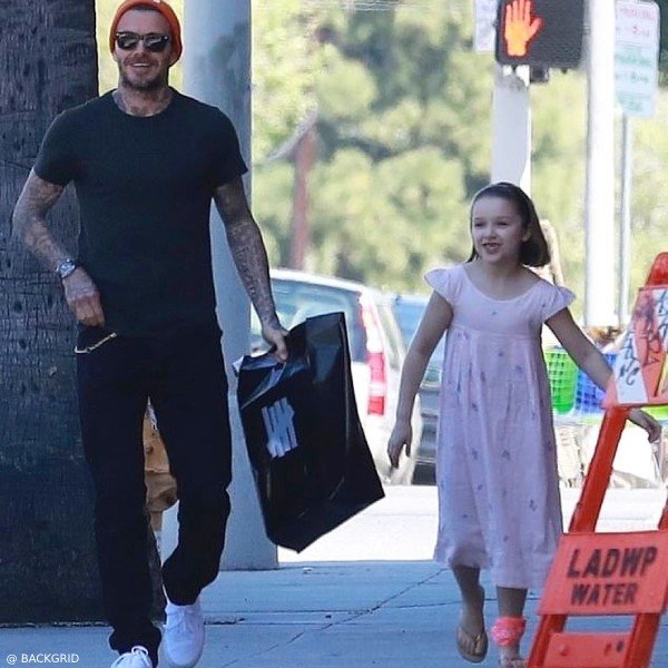 David and Harper Beckham LA Bonpoint Pink Embroidered Galantine Dress