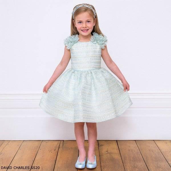 David Charles Blue & Gold Organza Flower Sleeveless Party Dress