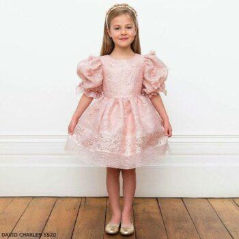 David Charles Girls Pink Jacquard Floral Print Special Occasion Dress