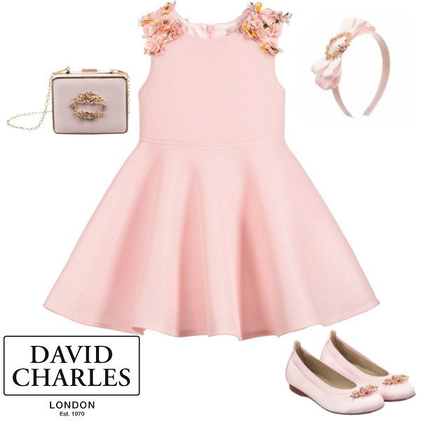 David Charles Girls Pink Mesh Flower Skater Party Dress Spring 2020