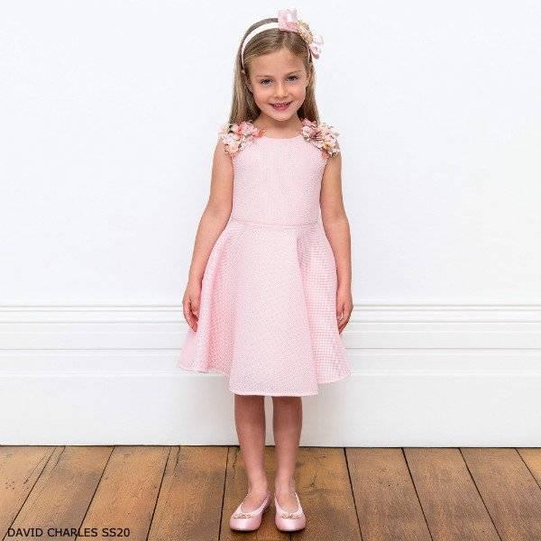 David Charles Girls Pink Mesh Flower Skater Party Dress