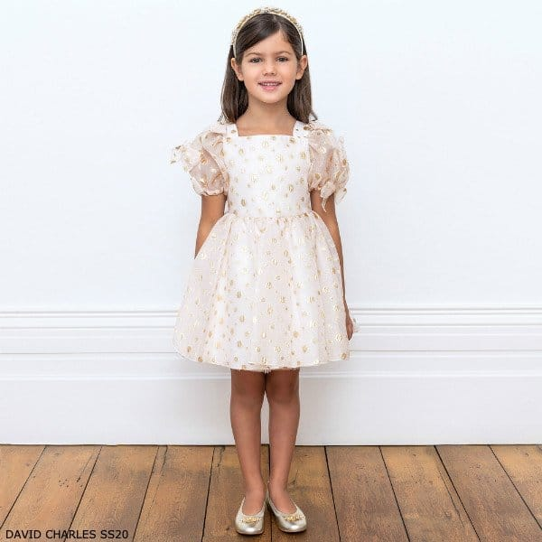 David Charles Girls Pink Organza & Gold Polkadot Party Dress