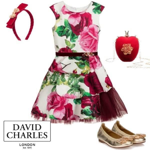 David Charles Girls Pink Green Ivory Flower Print Satin Tulle Party Dress Gold Shoe