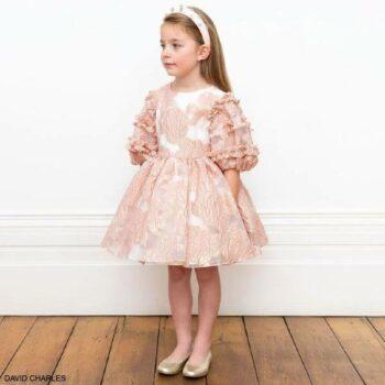 David Charles Girls Pink Gold Rose Pattern Organza Brocade Special Occasion Dress