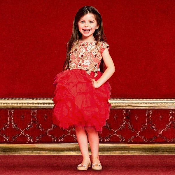 Lesy Red Tulle Dress with Ornate Gold Embroidery Jewels