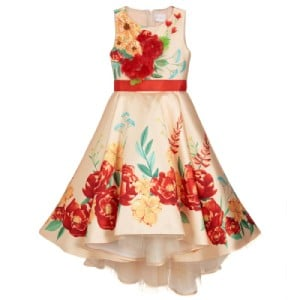 Eirene Gold & Red Floral Satin Dress